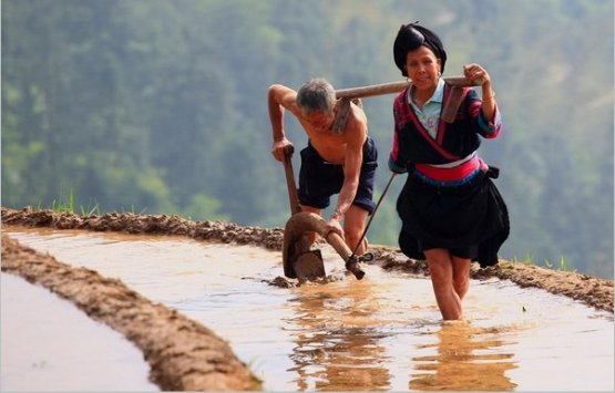 Image of 9 DAY Overland Na&Cul-ture Tour From Guilin To Guizhou