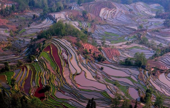 Best Shopping Sites >> China's Five Most Beautiful Rice Terraces Tour, Yunnan ...