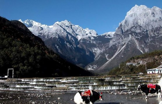 Image of Lijiang highlights tour